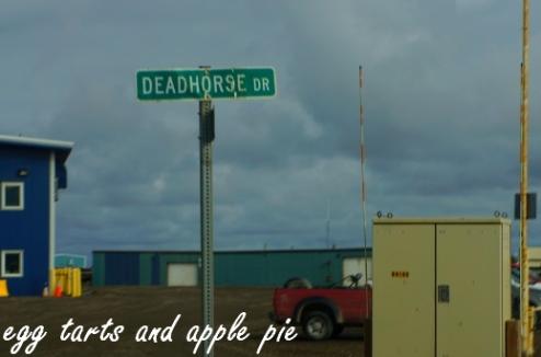 Deadhorse2